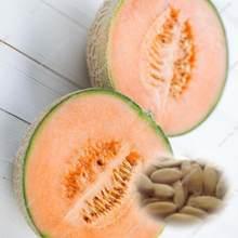 Melon Cantaloupe Promotion-Shop for Promotional Melon Cantaloupe on ...