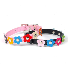 Pet Collar with Studded Flowers