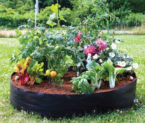 Garden Bags For Planting Global Buckets Grow Bags. Plant Potatoes ...