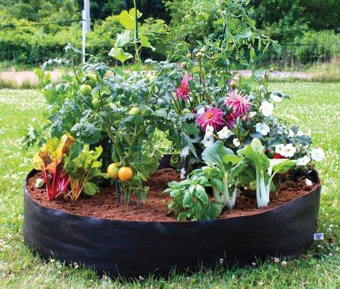 Aliexpresscom Buy Free shipping 100 Gallon grow bag Planting