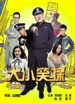 《大小笑探》2016年中国大陆电影在线观看