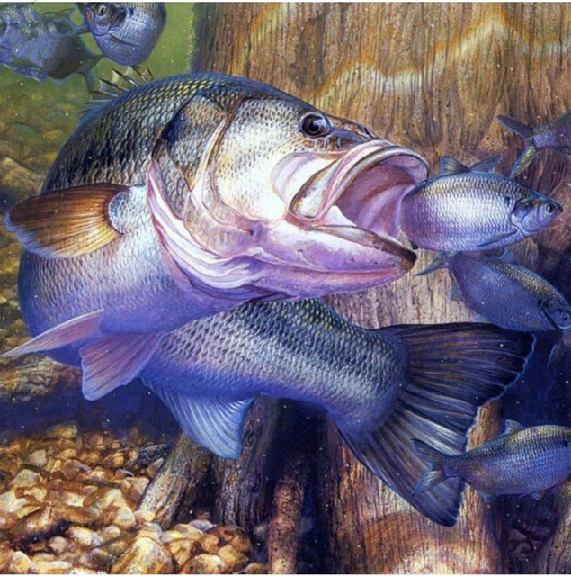 f16934023 DIY 5d mosaico Bordado grandes peces comen pequeños peces Cuadros de punto  de cruz kit artesanía