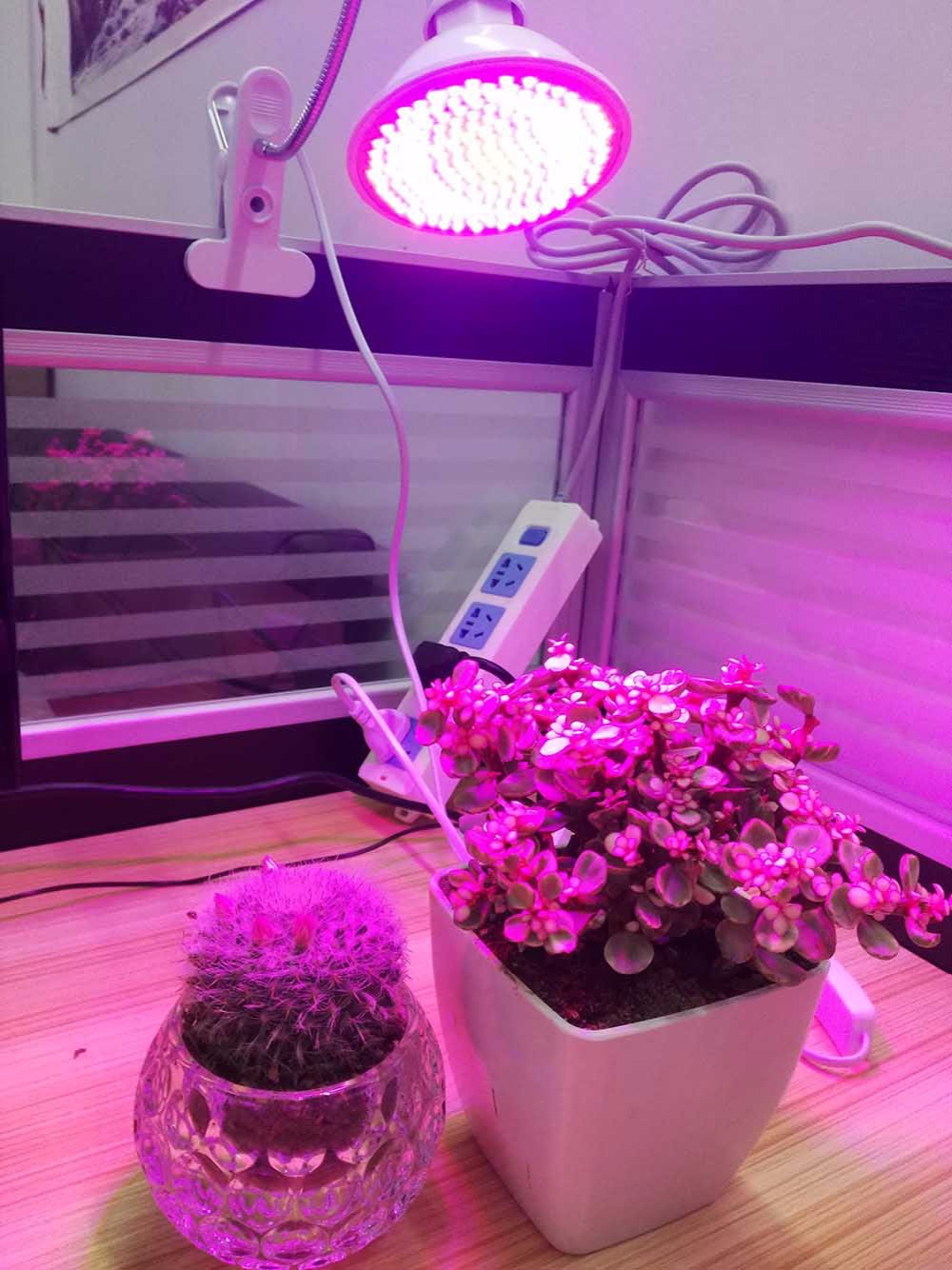 200 Led plant grow lampen verlichting met bureau Clip houder voor ...