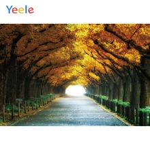 Yeele Autumn Boulevard Road Beautiful Landscape Natural Scenery Photography Backgrounds Photographic Backdrops For Photo Studio стоимость