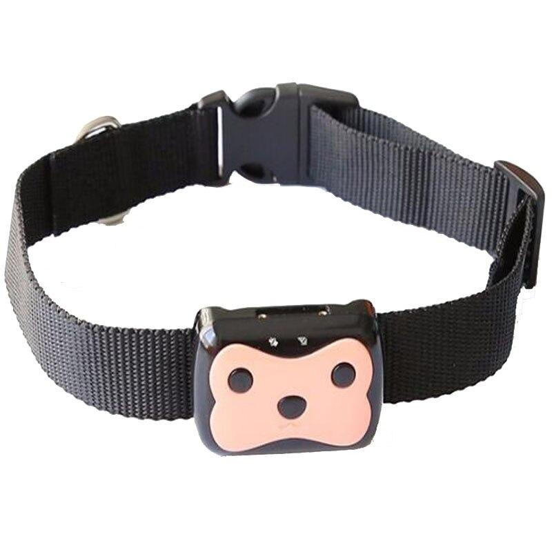 imágenes para Impermeable MiNi Mascotas Perseguidor de Los GPS GSM Localizador Collar Para Perro Cat Larga Espera Geo-cerca LIBRAS APLICACIÓN Gratuita Dispositivo de Seguimiento de la Plataforma D69