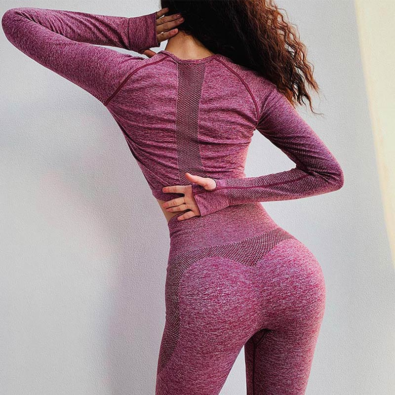 Le Nakai New Vital Seamless top for women seamless yoga top workout gym crop top long sleeves breathable yoga shirts activewear 1