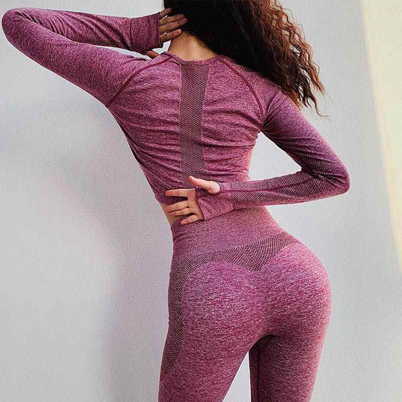 Le Nakai New Vital Seamless top for women seamless yoga top workout gym crop top long sleeves breathable yoga shirts activewear