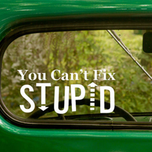 You Cant Fix Stupid Decal Stickers Cars Laptop Truck Travel Mug Window Bumper