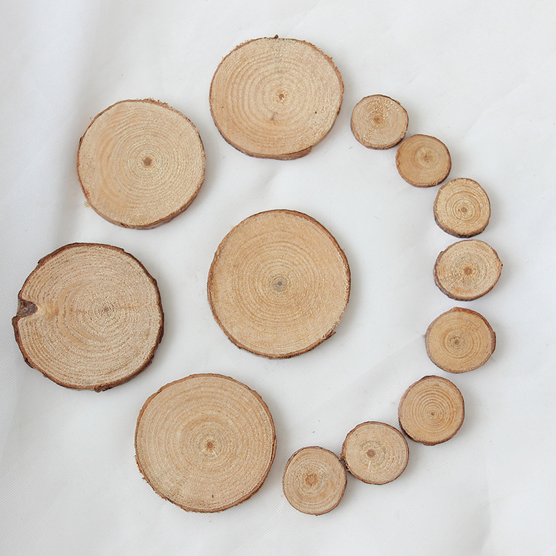 10pcs Unfinished Wood Natural Slices Round Discs Tree Bark Wooden For Home Decor