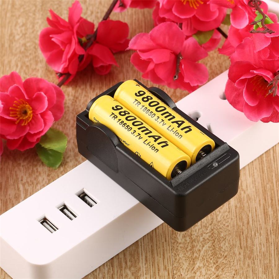 1Pcs Ion Li-Ion 4.2V Battery US Dual Battery Charger for 18650 Rechargeable Lithium Promotion Free shipping 1pcs new original for sanyo 18650 2600mah 3 7v ur18650zy li ion rechargeable battery free shipping page 3