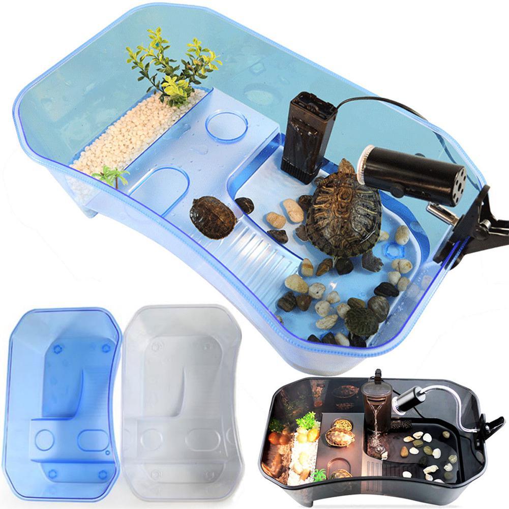 LanLan reptil tortuga Vivarium caja tanque del acuario con Basking rampa 40