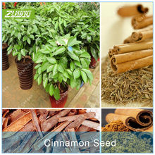 Popular Spices Wholesale-Buy Cheap Spices Wholesale lots
