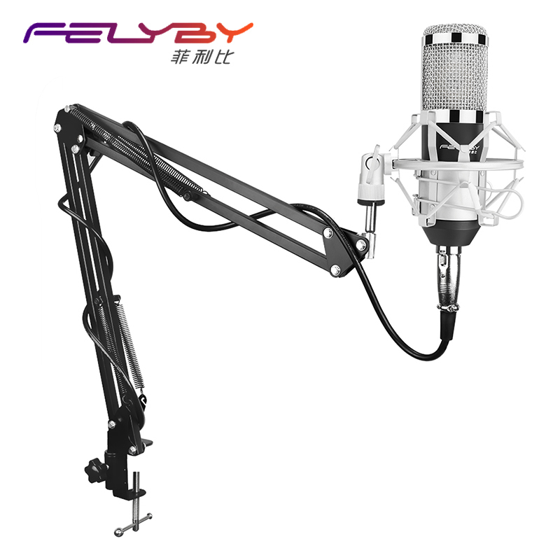 FELYBY Professional studio broadcasting BM-800 Condenser Microphone sound Studio Recording Microphones + Shock Mount Holder стоимость
