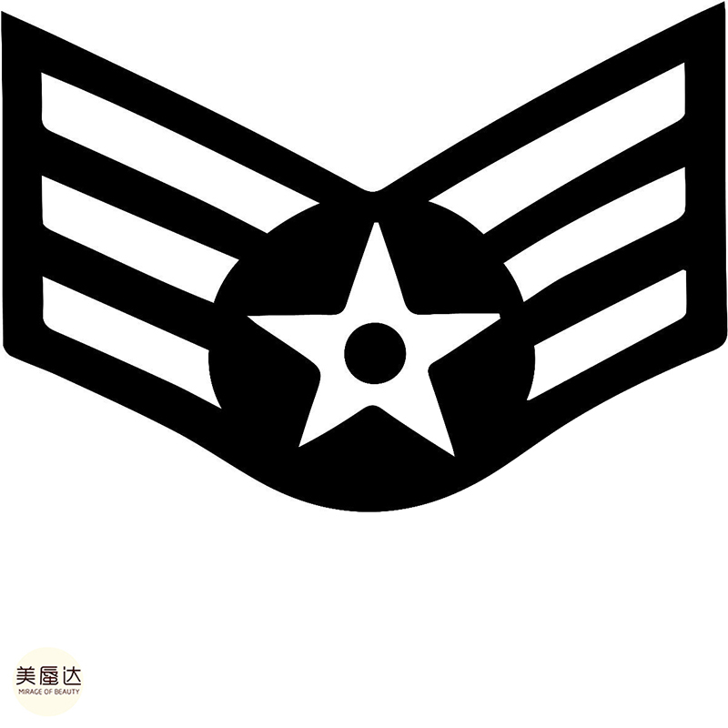 Air Force Pilot Wings Wall Vinyl Decal Sticker Military U.S