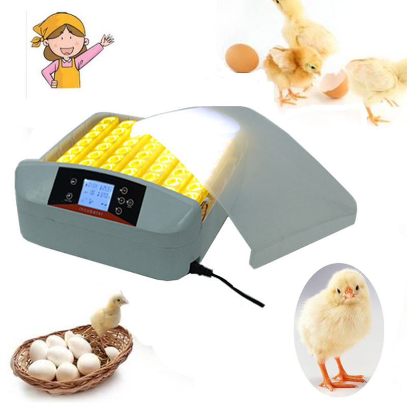 56 Eggs automatic poultry incubator chicken egg incubator equipment price with Temperature Control de warehouse cheap chicken egg incubator 48 eggs automatic equipment hatching machines