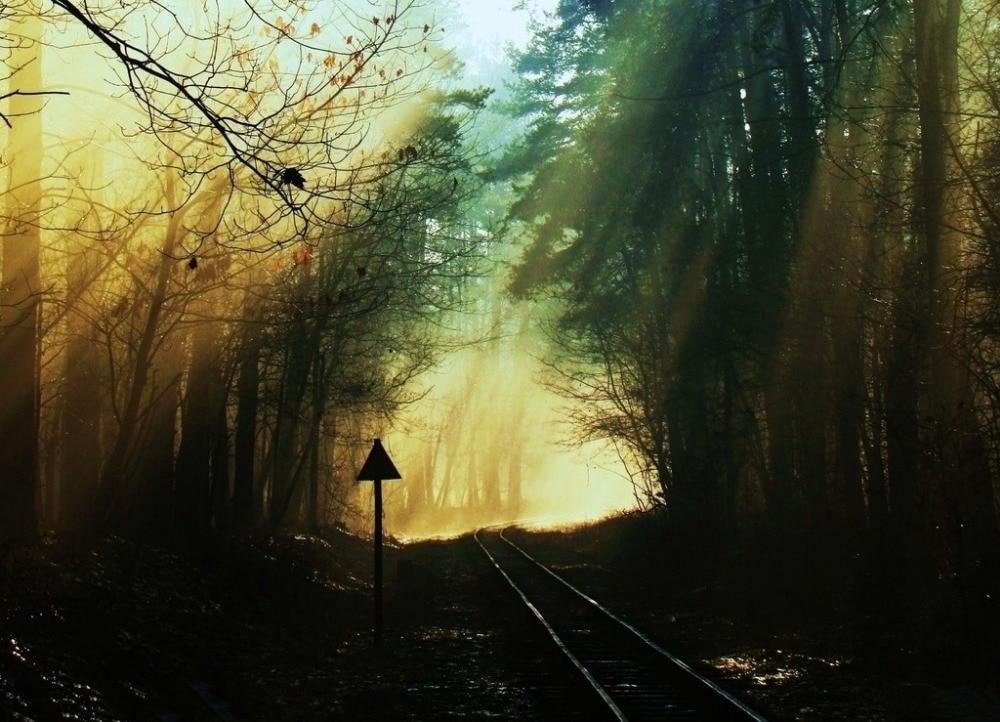 7x5ft Vinyl Custom Railway Theme Photography Backdrops Prop Photo Studio Background NTG-115