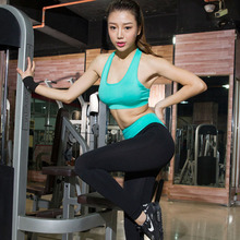 Women Gym Running Tight Fitness Clothing Training Quick Dry Set Breathable Vest Bra Sport Leggings Long Pants Yoga Suit 05