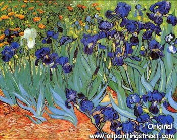 Vincent Van Gogh Oil Painting reproduction on linen canvas,Irise , Free DHL Shipping,100% handmade,Museum quality