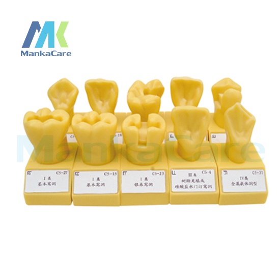 Manka Care - 4 Times Single color Cavity Preparation/imported resins/ showing different forms of standard socket hole manka care teeth preparation made of imported resin can be used for both operative dentistry and prosthodontics
