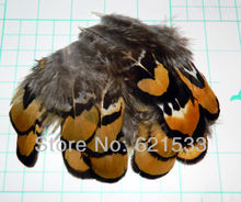 New Arrival! 100Pcs/Lot 6-8cm Nature Colour  Amherst Pheasant Yellow Tipped Feathers Fly tying / crafts Free shipping