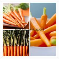 100pcs/lot Mini Small Orange Carrot, Carrot Seeds, Vegetable Seeds, Garden Plant, Healthy Vegetable