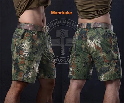 New Summer Nomad militære shorts Knelengde korte bukser for trening - Sportsklær og tilbehør