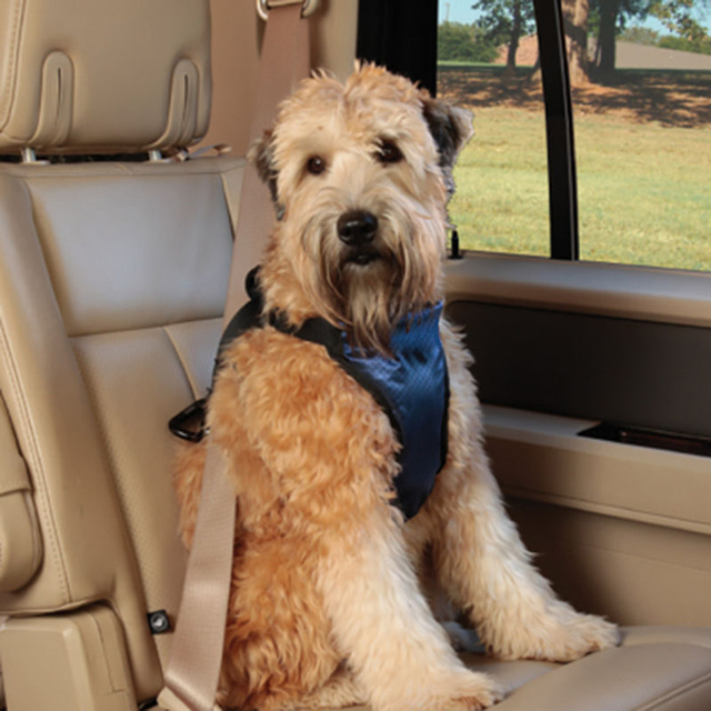 3-54kg Deluxe Car Dog Seat Belt Auto Dog Safety Harness Vest Seat Belts Protection Pad For Pet Small Dogs Outdoor Travel