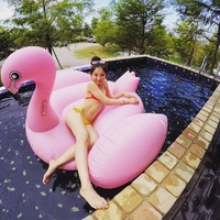 Rooxin Giant Flamingo Inflatable Circle Pool Float Swimming Ring for Adult Air Mattress Seat Floating Bed Raft Pool Party Toys