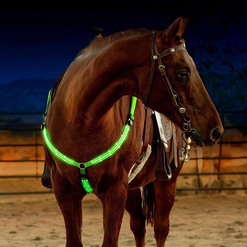 Image 3 - LED Horse Harness Breastplate Nylon Webbing Night Visible Horse Riding Equipment Paardensport Racing Cheval Equitation-in Halters from Sports & Entertainment