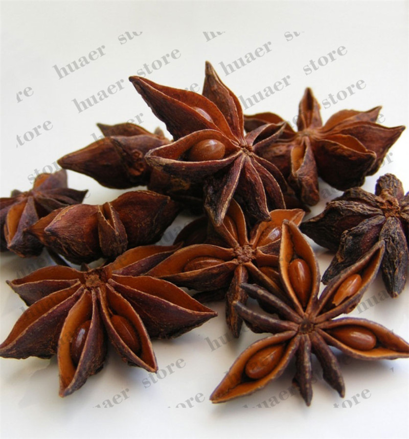 30pcs/Chinese Kitchen Cooking Seasoning Spice Star Anise Herb Potted