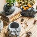 Kreative Beton Schwein Fisch Katze Kaninchen Skulptur Statue Sukkulente Container Grün Pflanzer Kleine Bonsai Töpfe Wohnkultur