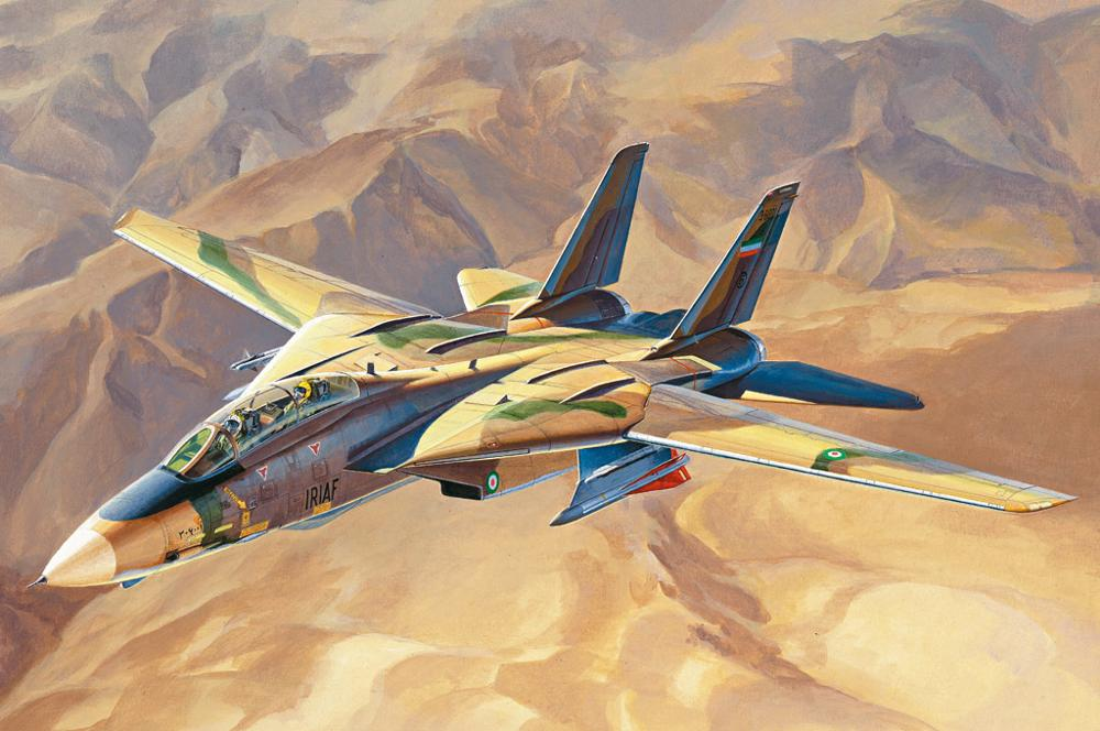 "Hobbyboss 81771 1/48 Scale ""Persian Cat"" F-14A TomCat - IRIAF Fighter 2019 New"