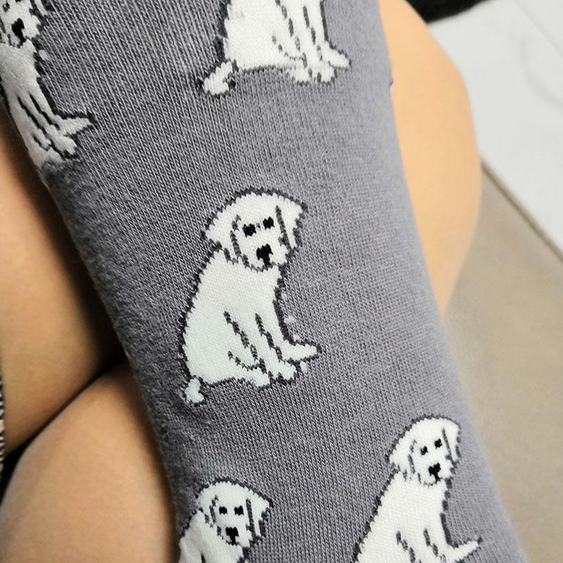 Maltese Puppy Dog Blue Cotton Ladies Socks
