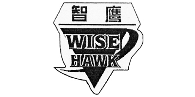 Лого бренда WISE HAWK из Китая
