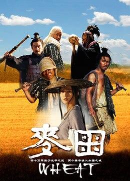 《麦田》2009年中国大陆动作,剧情,历史电影在线观看