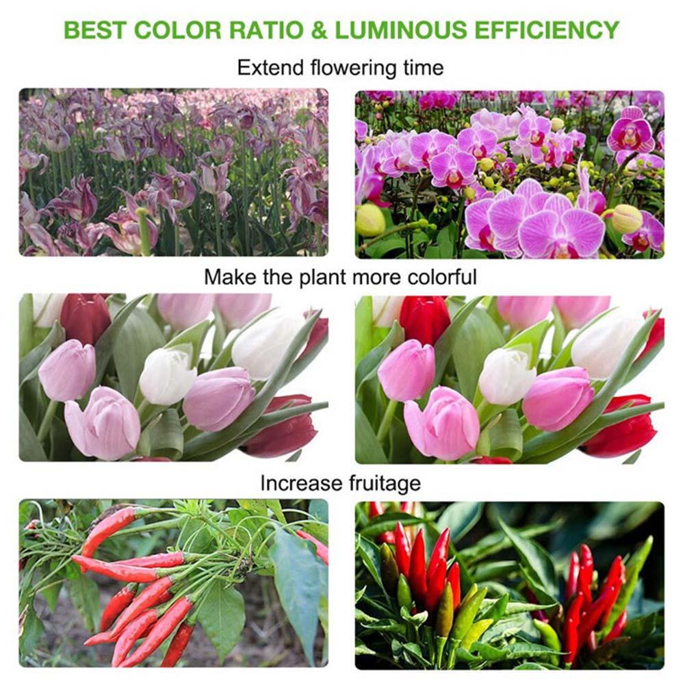 300W Full Spectrum Hydroponic LED Grow Light Indoor Veg Flower Plant Lamp Panels