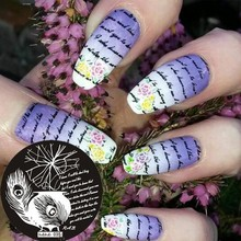 1x Nail Art Stamping Plate Template Letter Feather Stamp Image hehe035#