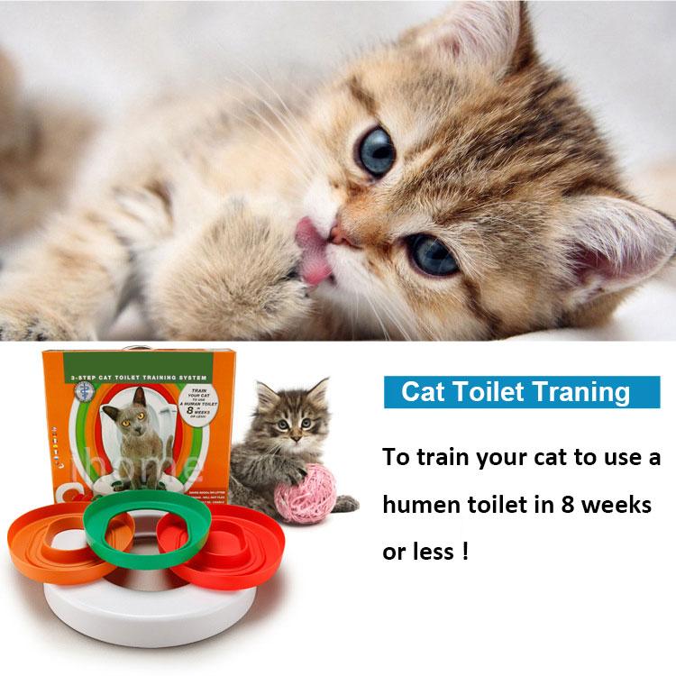 CAT-TOILIT-Training(3)