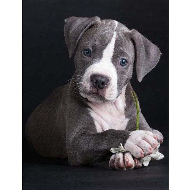 5d Diy Diamond Painting Animal Cute