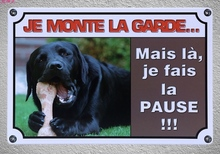 1 pc French Quotes saying Dog house no trespassing Tin Plate Sign wall plaques Decoration Dropshipping metal Poster
