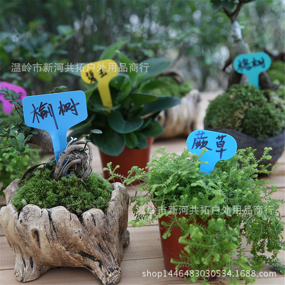 2018101601 pareja 21 colores 57 Dollar jardín bolsa de almacenamiento de colores bolsas de crecimiento hierba hojas bolsa Home Garden Supplies