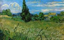 Handpainted Vincent Van Gogh Reproduction Oil Painting Green Wheat Field With Cypresses Frameless Art On Canvas For Home Decor(China)