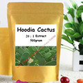 17.6oz (500g) HOODIA GORDONII EXTRACT Powder - Natural Fat Burners For Weight Loss