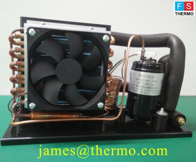 12V/24V DC Compressor Walk In Solar water chiller Freezer