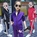 New Fashion Kids Outfit Children Girl Boy Autumn Velvet Sport Suit Kids Girl Jacket Hoody Coat with Pant Set Clothing