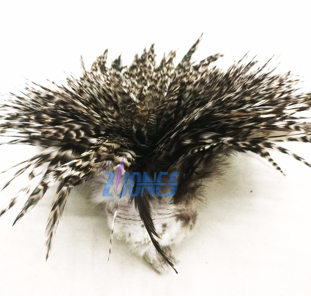 Free Shipping 900pcs 12-15cm Natural Color Grizzly Stripe Chicken Rooster Plumage Feathers For Jewelry Making Bulk Sale