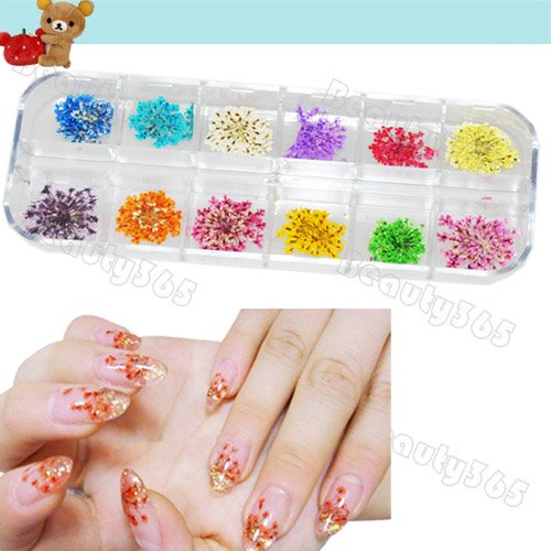 12 Colors Real Dry Dried Flowers Nail Art Decoration Diy Tips