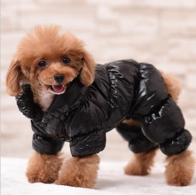 Impermeabile Pet Vestiti Del Cane Cappotto Per Cani di Taglia Piccola Inverno Gi
