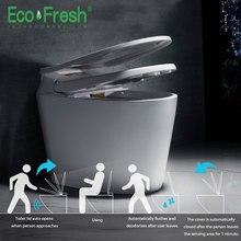 Ecofresh умный автоматический для туалета крышка и сиденье флип интегрированная автоматическая интеллектуальная Крышка для туалета моющийся сухой массаж