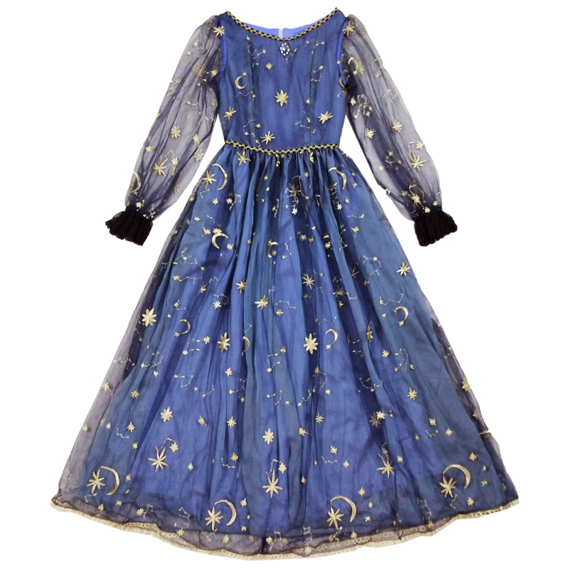 Starry Sky Embroidered Vintage Maxi Dress Sheer Sleeve Long Party Dress by Miss Point ~ Custom Tailored